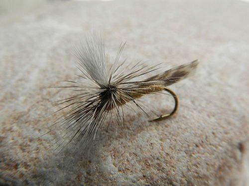 Parachute Caddis tan